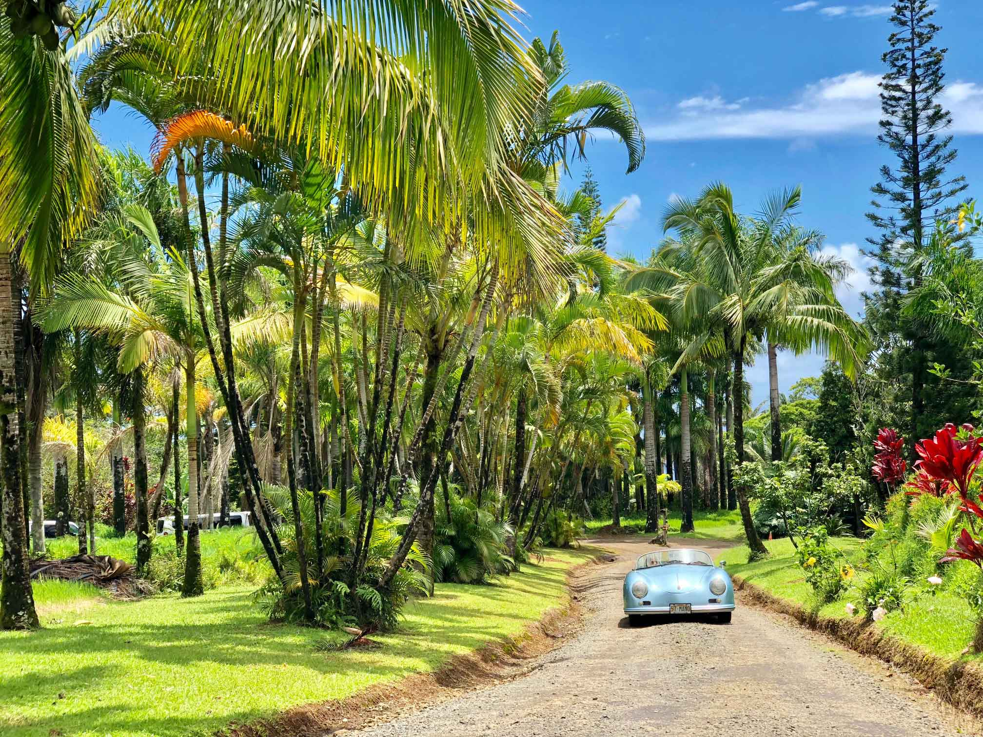 visiting Maui, what to do in Maui, twin falls maui, lava tubes maui, where to stay in Wailea, Royal Lahaina Resort Luau, where to eat in Wailea, where to stay in Lahaina, where to snorkle in maui, night time snorkle, night time snorkle maui, Haleakala Maui Sunrise Tour, Te Au Moana Luau Dinner, Te Au Moana Luau Maui, luau maui, Haleakala Maui Sunrise Tour review, Haleakala Maui Sunrise Tour cost, labor day weekend Maui, mamas fish house maui, dinner at mamas fish house, what to order at mamas fish house maui, memorial day weekend maui, where to stay in Maui, what to eat in Maui, marriott wailea resort maui, marriott wailea resort rooms, marriott wailea resort breakfast, marriott wailea resort review, royal lahiana resort review, road to hana, garden of eden road to hana, the shaka guide, the shaka guide app, renting a car in maui, planning a trip to maui, 3 day vacation in maui, what to do in three days in maui, is 3 days enough for maui,